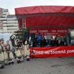 festivalul toamnei (3)